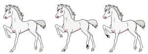 Frost X Laural's Foals