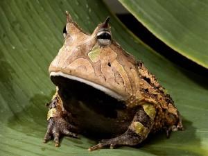 joduffy's Profile Picture