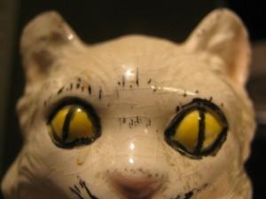 dasomerville's Profile Picture