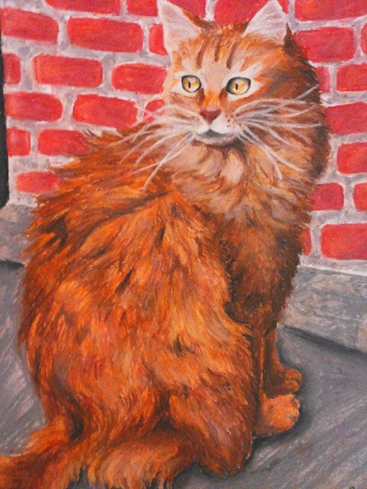 Orange cat -Who is there... by xXSunny-BlueXx