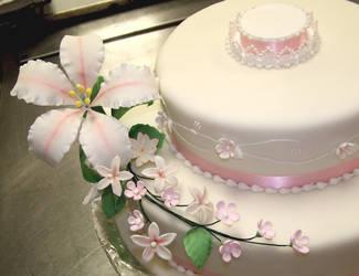 Wedding Cake by IMntHRimEVRYWHER