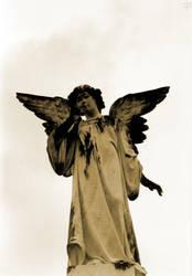 Stone Angel I by blue-bella-donna