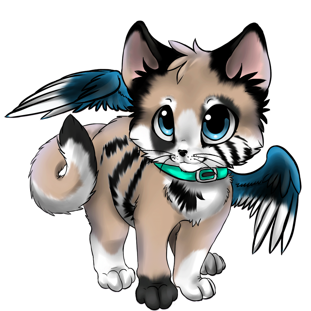 Anime Cat With Wings anime cat with wings
