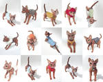 Jacob, Abyssinian Cat Ball Jointed Doll! Outfits by vonBorowsky