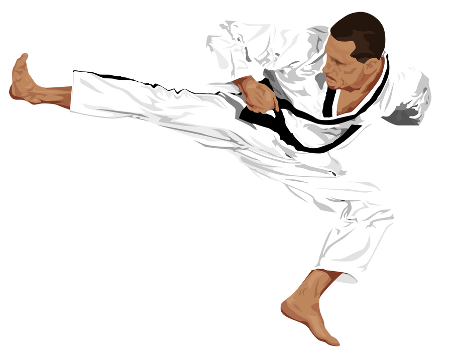 Taekwondo Vector by MaryAnnBubna