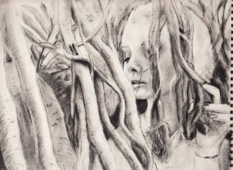Woman and the trees