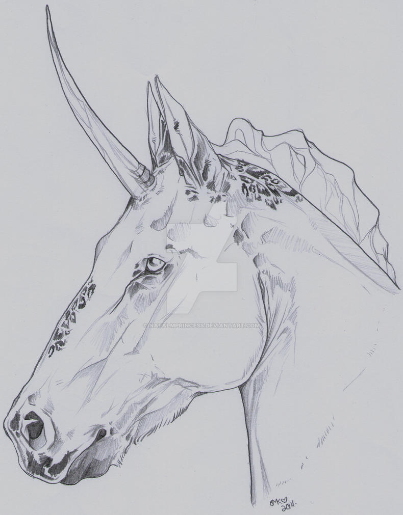 Sir Unicorn by NapalmPrincess