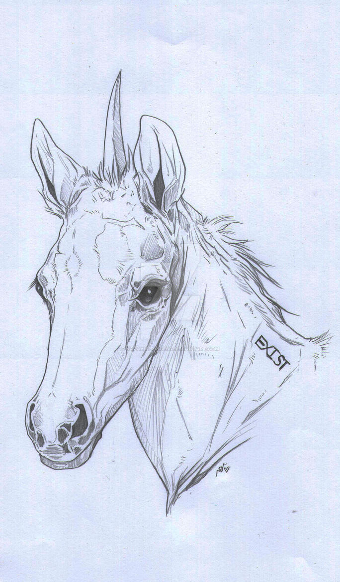 Baby Unicorn by NapalmPrincess