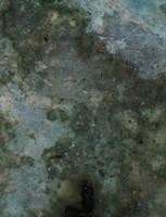 Amptone Texture 63 by amptone-stock