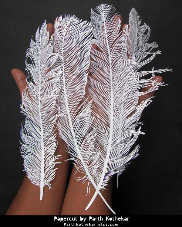 Papercut feather papercutting paper art by for Beautiful paper cutting art