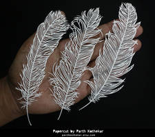 Papercut - Craft - Papercutting - Paper - Feathers by ParthKothekar