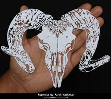 Papercut - Papercutting - Ramskull - Skull - Craft by ParthKothekar