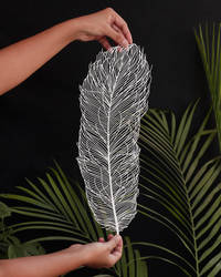 Ostrich Feather Paper Cutting Art Papercut Design