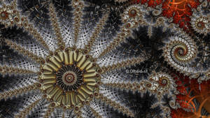 Mandelbrot 147 - Disorganized wish -