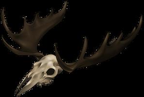 Skull - Moose by momma-kuku