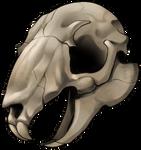 Skull - Rabbit by momma-kuku