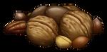 Nuts by momma-kuku