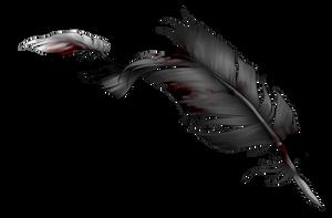 Tattered feather by momma-kuku