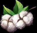 Cotton by momma-kuku