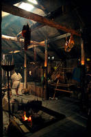The Viking House by bombyaker