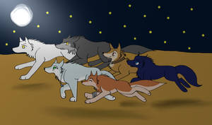 Wolfs Rain Characters and May