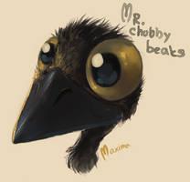 Mr.Chubby beaks