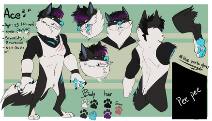 Ace new reference sheet
