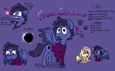 Moon Shadow Reference Sheet