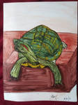 My turtle by Bertriced