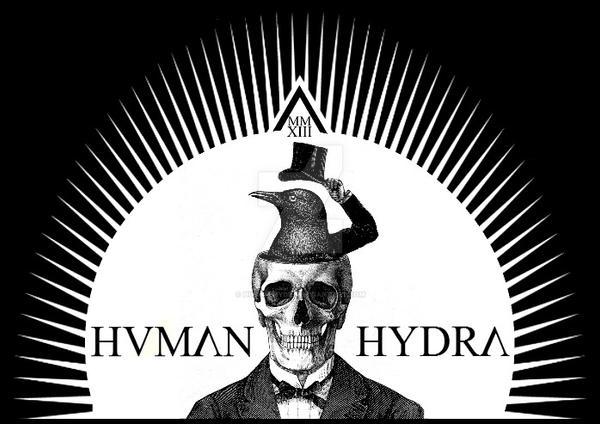 Skull and Bird by Human-Hydra