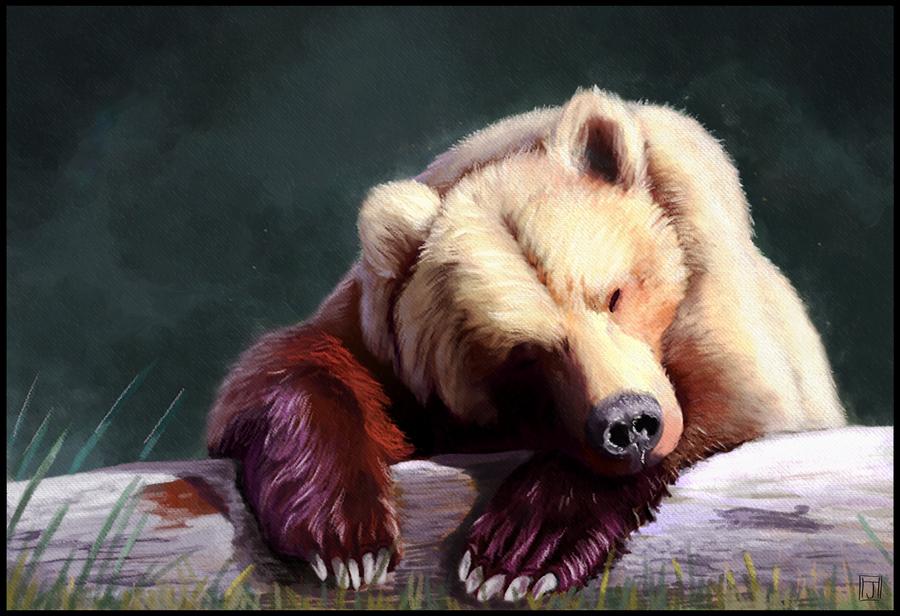 Sleepy Bear by ArtofJeffHebert