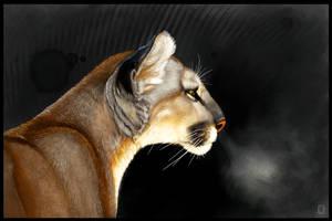 Cougar Intensity by ArtofJefferyHebert