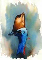 Cassowary Study 1, Watercolor 9x12 by ArtofJefferyHebert