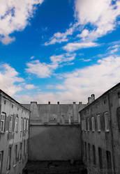 Blue sky by pszczolabzzz