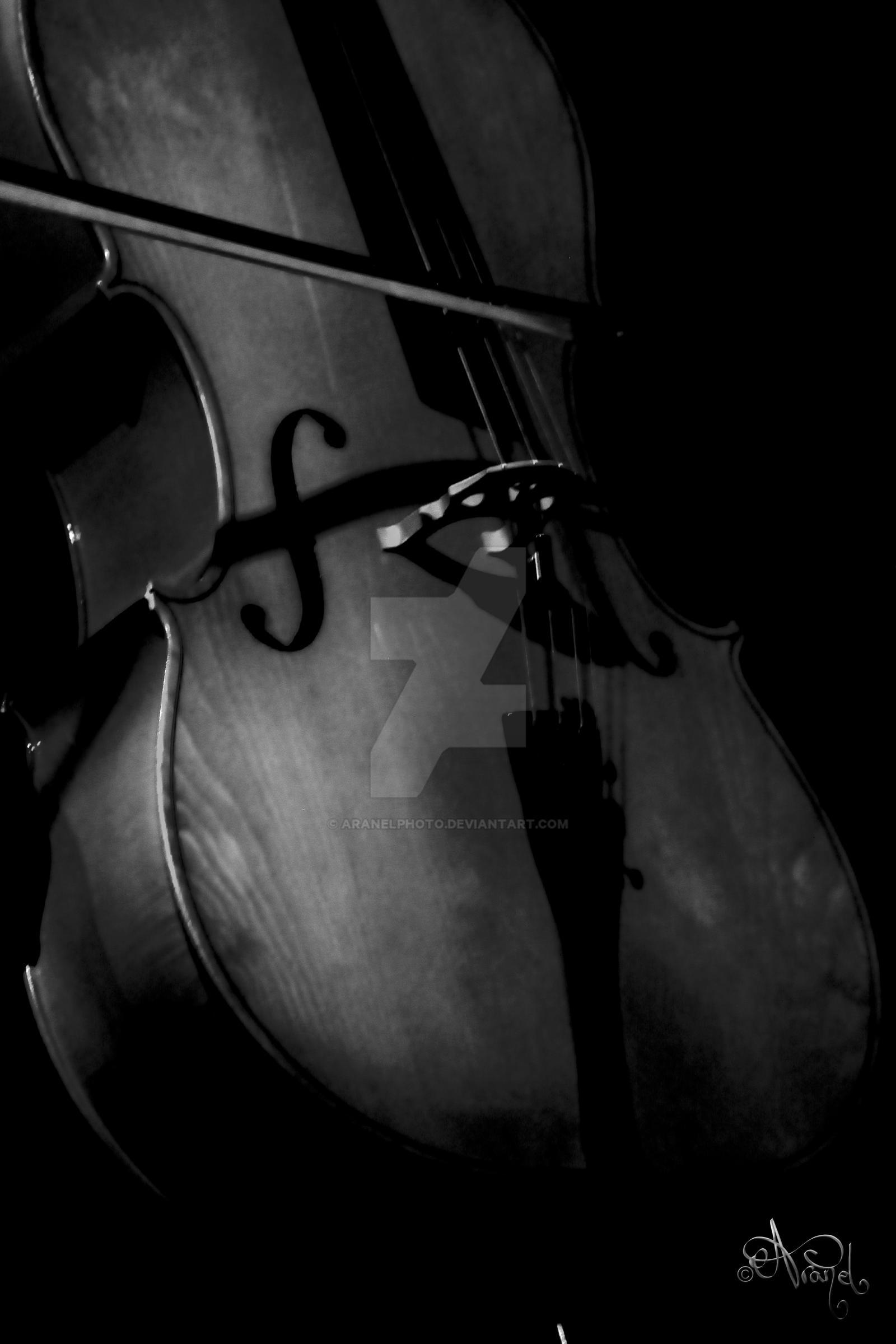 cello by aranelphoto on deviantart
