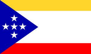 Social Federation of America Flag