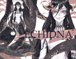 [OPEN] ECHINDA by KINNYno
