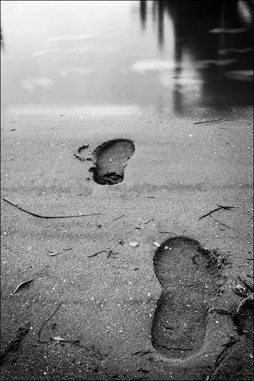 gone... by Tom-Ripley