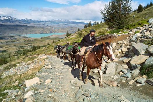 Patagonian Ride