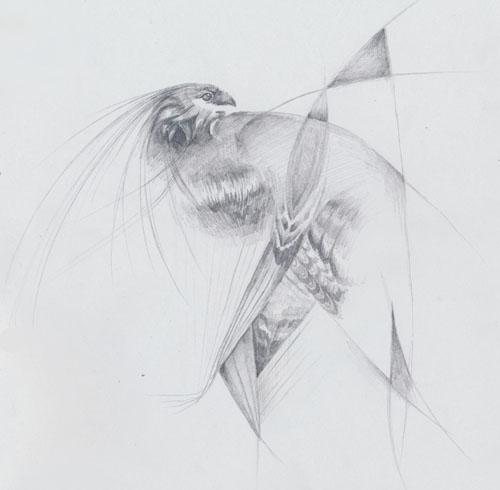 Sturnus Vulgaris by fishydraws