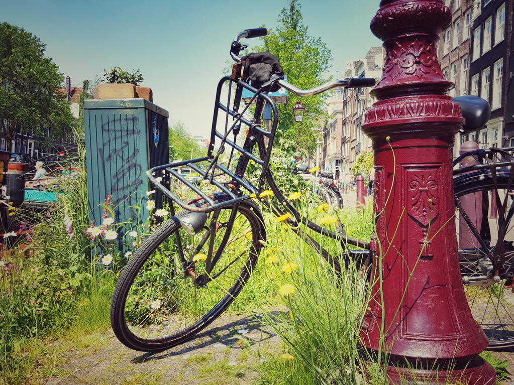 Summer in Amsterdam by Stevie73