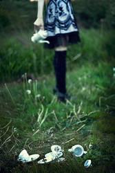 _alice in W. by josefinejonssonphoto