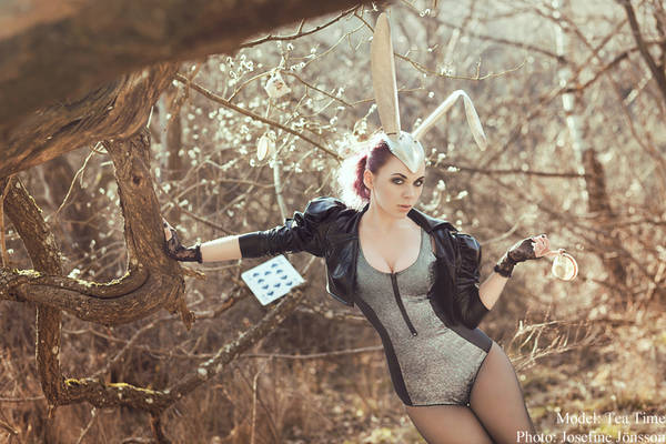 _March Hare II.