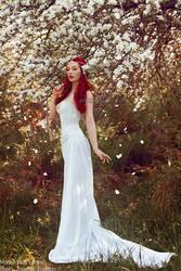_White rose. by josefinejonssonphoto