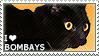I love Bombays by WishmasterAlchemist