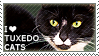 I love Tuxedo Cats by WishmasterAlchemist