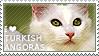 I love Turkish Angoras by WishmasterAlchemist