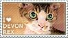 I love Devon Rex by WishmasterAlchemist