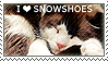 I love Snowshoes
