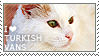 I love Turkish Vans by WishmasterAlchemist